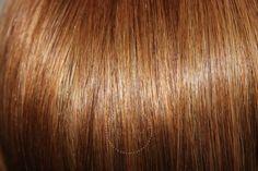 "Lilly Hair  260g 20"" Chestnut Brown (6)"