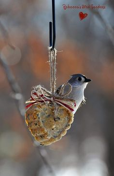 ♥ heart bird feeders