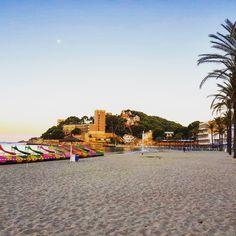 Sonnenaufgang am Playa Palmira am Morgen in Paguera Mallorca Beach Club, Hotel Am Strand, Hotels, Das Hotel, Dolores Park, Travel, Palmyra, Beach, Sunrise