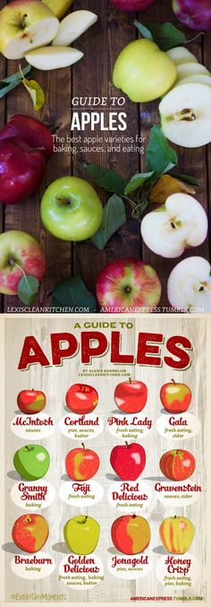 Guide to #APPLES! The best apples for baking, eating, sauces, and apple butter! yum!!