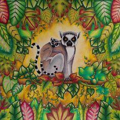 My lemurs #magicaljungle #magicaljunglecoloringbook #johannabasford #johannabasfordmagicaljungle #adultcoloring #adultcoloringbook #coloringforadult #coloringbook #coloringbookforadult #prismacolor #prismacolorpremier #lemurs