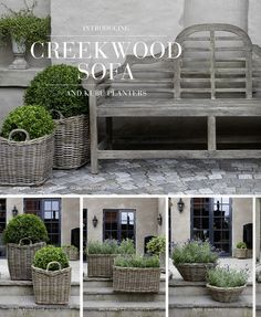 Topiaries in Baskets...easy & so decorative!