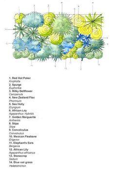 Planting scheme for a dry border. Good for Essex gardens! Cottage Garden Design, Garden Design Plans, Tropical Landscaping, Landscaping Plants, Landscape Plans, Landscape Design, New Zealand Flax, Architectural Plants, Stipa