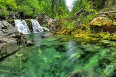 Saw Mill Falls on Opal Creek.one of my fave swimming holes in Oregon! Oregon Travel, Travel Usa, Opal Creek Oregon, The Places Youll Go, Places To See, All I Ever Wanted, Swimming Holes, Oregon Coast, Vacation Spots