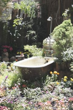Spring Bathing