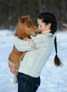 Mini horse lifted up above snow | 10 Beautiful Horses Loving the Snow