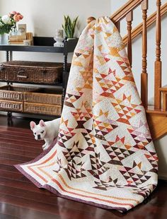 Butterscotch Baskets scrap quilt pattern by Lissa Alexander in Scrap School Book Fabric Bins, Fabric Scraps, Scrap Quilt Patterns, Scrap Fabric Projects, Designer Friends, Quilt Top, Quilt Border, Leftover Fabric, Traditional Quilts