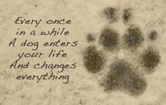so true----♥