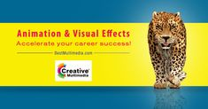 Arena Animation Dilsukhnagar - top Multimedia and Animation college in hyderabad. We provide best Graphic designing, web designing, Animation & VFX courses