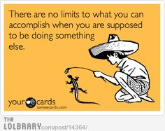 There are no limits to what you can accomplish...