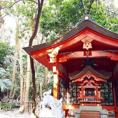 【beijos_capone】さんのInstagramをピンしています。 《青島もよかったなー。 亜熱帯の中に神社。幻想的✨ #宮崎#青島#青島神社#aoshima#shrine #神宮#神社#九州#miyazaki #큐슈#미야자키#일본#japan #subtropical#forest#亜熱帯#森 #niceview#beautiful#shorttrip##drive #드라이브#여행스타그램#신사》