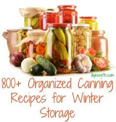 800+ Organized Canning Recipes // http://www.diyncrafts.com/3657/homemade/800-organized-canning-recipes-winter-storage