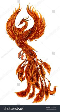 Phoenix Fire bird illustration and character design., Fire bird illustration and character design.Hand drawn Phoenix tattoo Japanese and Chinese style,Legend of the Firebird is Russian fairy tales. Phoenix Artwork, Phoenix Drawing, Phoenix Bird Tattoos, Phoenix Images, Phoenix Tattoo Design, Feather Tattoos, Real Phoenix Bird, Phoenix Back Tattoo, Crow Tattoos