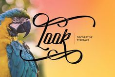 Elementype introducing you Look Decorative Script, a Display script typeface to make your text look beautiful. Today you can have a shot