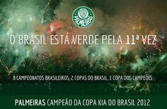 Palmeiras!!! 11/07/2012 É Campeão!!!!!!!!!!