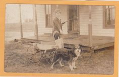 Real Photo Postcard RPPC - Boy with Toy Rifle and Dog Drawn Wagon