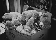 Once the joy by Alex Cruceru - Once a story Thank you all for viewing my work and feel free to post your critique. Teddy Bear, Joy, Feelings, Architecture, Photography, Animals, Free, Arquitetura, Photograph