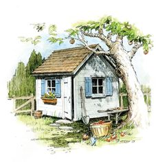 Plans to build a classic cottage garden shed