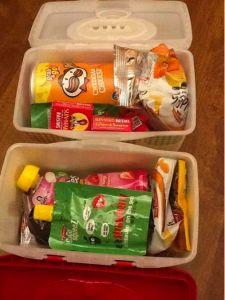 Individual snack boxes - fruit snacks, pringles, goldfish, etc.