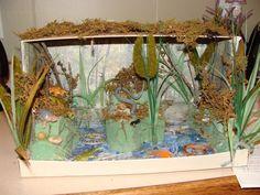 1000 Images About Habitat Swamp On Pinterest Diorama