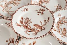 Set of 6 French antique plates from Gien. Brown Transferware set, Cactus design. French country chic plates set.