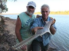 RIVER MONSTERS.  Extreme angler Jeremy Wade uncovers the world's largest, strangest and most dangerous fish in RIVER MONSTERS.    Check out our website for unbelievable fish photos, strange fish facts, behind-the-scenes information, deleted scenes, Jeremy Wade's fishing tips and more.
