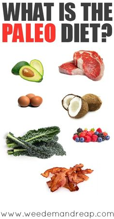 What is the Paleo Diet and why is everybody talking about it? Well, today I'm going to dive right into the Paleo world, explain the history and the benefits of...