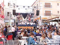 06 Actuacions Trobades d'Escoles en Valencià 2013 a Pedreguer 101 (83) Foto: laveupv.com