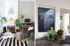 Indoor plants - see individual links on blog