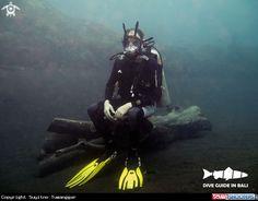 A Come dive ...!