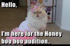 Honey boo boo audition..