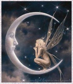 man in the moon with fairy