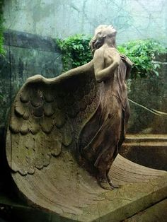 ☫ Angelic ☫ winged cemetery angels and zen statuary - Warsaw, Poland Graveyard Cemetery Angels, Cemetery Statues, Cemetery Art, Highgate Cemetery, Angels Among Us, Angels And Demons, Statue Ange, Sculpture Art, Sculptures