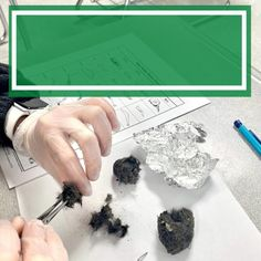 This engaging OWL PELLET DISSECTION LAB offers students an engaging, hands-on experience. This complete lesson plan includes everything you need to execute the perfect, ready-to-go lab for your students.
