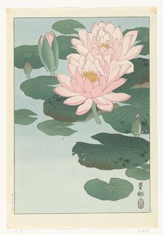 Ohara Koson Water Lilies 1920 Japanese Woodblock Print Vintage Historical Japanese Art Art Print by Tokugawa - X-Small Japanese Artwork, Japanese Painting, Japanese Prints, Chinese Prints, Ohara Koson, Water Lily Tattoos, Lily Painting, Art Asiatique, Japanese Flowers