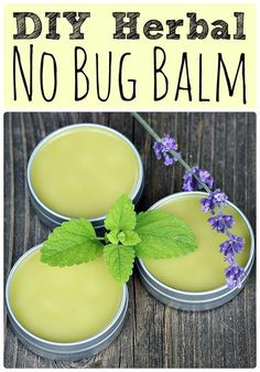 Bug Balm Get my recipe for this DIY herbal no bug balm made with lemon balm and other herbs and flowers. It's easy to make and keeps the bugs away!Get my recipe for this DIY herbal no bug balm made with lemon balm and other herbs and flowers. It's easy to Natural Health Remedies, Herbal Remedies, Home Remedies, Healing Herbs, Natural Healing, Holistic Healing, Medicinal Plants, Natural Medicine, Herbal Medicine