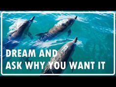 Abraham Hicks - Dream big and ask WHY you want it not how / No Ads during (Eng/Kor subtitles) Peace Quotes, Quotes Quotes, Positive Attitude, Attitude Quotes, How High Are You, Missing You Quotes, New Beginning Quotes, Friendship Day Quotes, Abraham Hicks Quotes