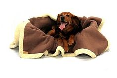 Cookie Dough Brown Sherpa Throw - pets
