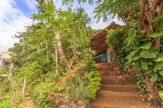 Experience #Ella and visit the surrounding sites from this nice little homestay. #SriLanka