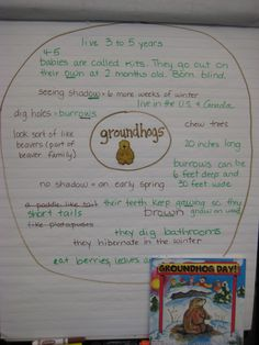Finally in First: Groundhog Day thinking map w/ Gail Gibbons book...also FREE template for writing about reading craftivity