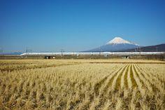 Tokaido by peaceful-jp-scenery Mt.Fuji and Tokaido Shinkansen 富士山と新幹線  This is the major photographing spot for Mt.Fuji and Shinkansen. Many cameraman visit here.  時に撮り鉄気分 ここは国道1号線と平行に走る県道沿いで アクセスしやすく鉄道写真の定番となっている場所です この日も多くのカメラマンが構えていました 鉄道写真は苦手なのでごく平凡な撮影ですみません  Fuji city Shizuoka pref Japan http://flic.kr/p/pPcpky