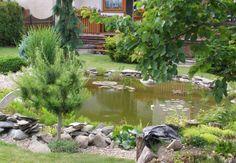 Okrasná zahradní koupací jezírka a rybníčky