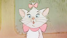 aristocats - <3 cats - my favorite is Birman