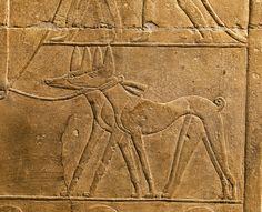 Los policías del antiguo Egipto: duros y corruptos · National Geographic en español. · Secciones