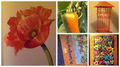 Synchroonkijken dag 3 Oranje - Maak 11 foto's en pin de 11e. Mooie persoonlijke herinneringen die ik koester, maar het zijn de nrs. 1 - 5 Niet dus
