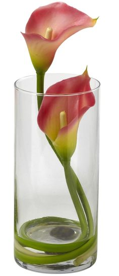 Double Calla Lily in Glass Cylinder - It would make a lovely, simple centerpiece.