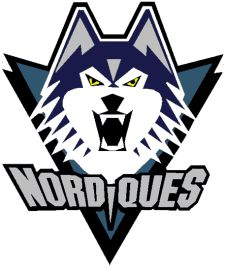 what the nordiques logo would have looked like in if the team had stayed in Quebec and not moved to Denver to become the Colorado Avalanche Nhl Hockey Teams, Hockey Logos, Sports Logos, Maurice Richard, Quebec Nordiques, Moving To Denver, Team Mascots, Colorado Avalanche, Just A Game