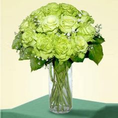 12 Super Green Roses - http://www.247babygifts.net/12-super-green-roses-2/