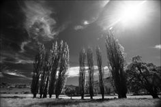 Eastern Free State - Black & White photography