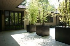 modernize your garden with bamboo